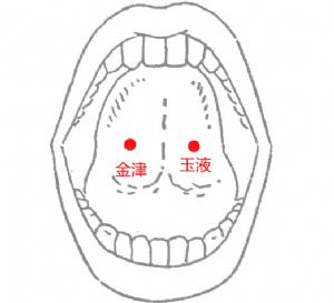 经外奇穴——金津玉液的位置