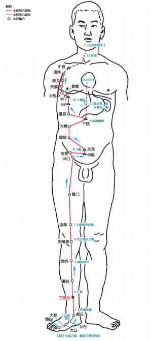 三阴交穴在足太阴脾经中的位置