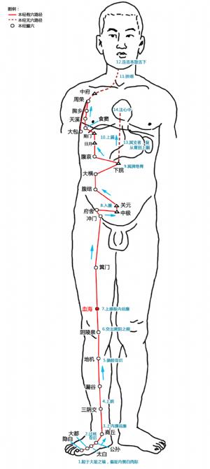 血海穴在足太陰脾經中的位置.png