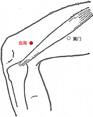 血海穴的位置.png