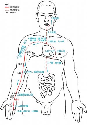 神門穴在手少陰心經中的位置.png