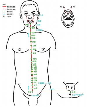 水分穴在任脉的位置